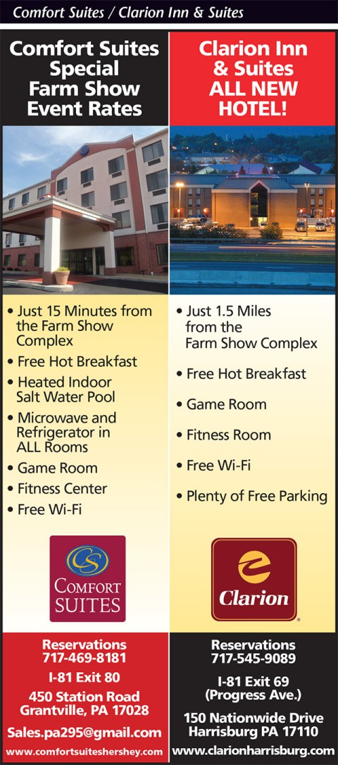 Comfort Suites / Clarion Inn and Suites