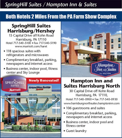 SpringHill Suites / Hampton Inn and Suites